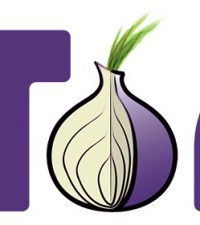 Tor Browser 8.0a4